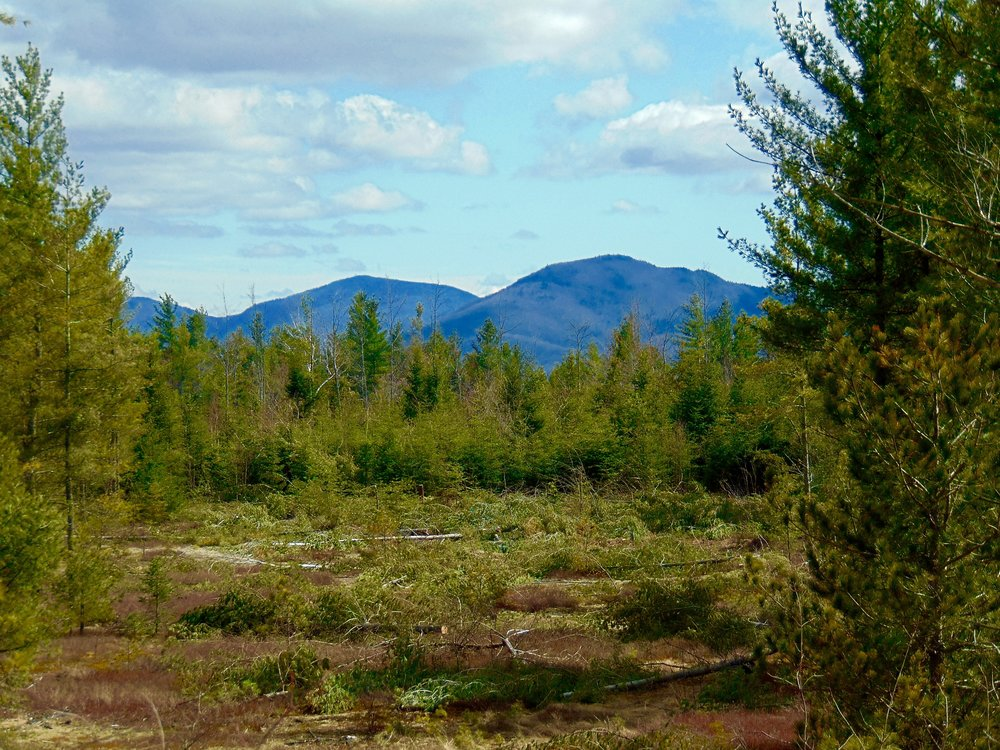Adirondack Land with Magnificent View