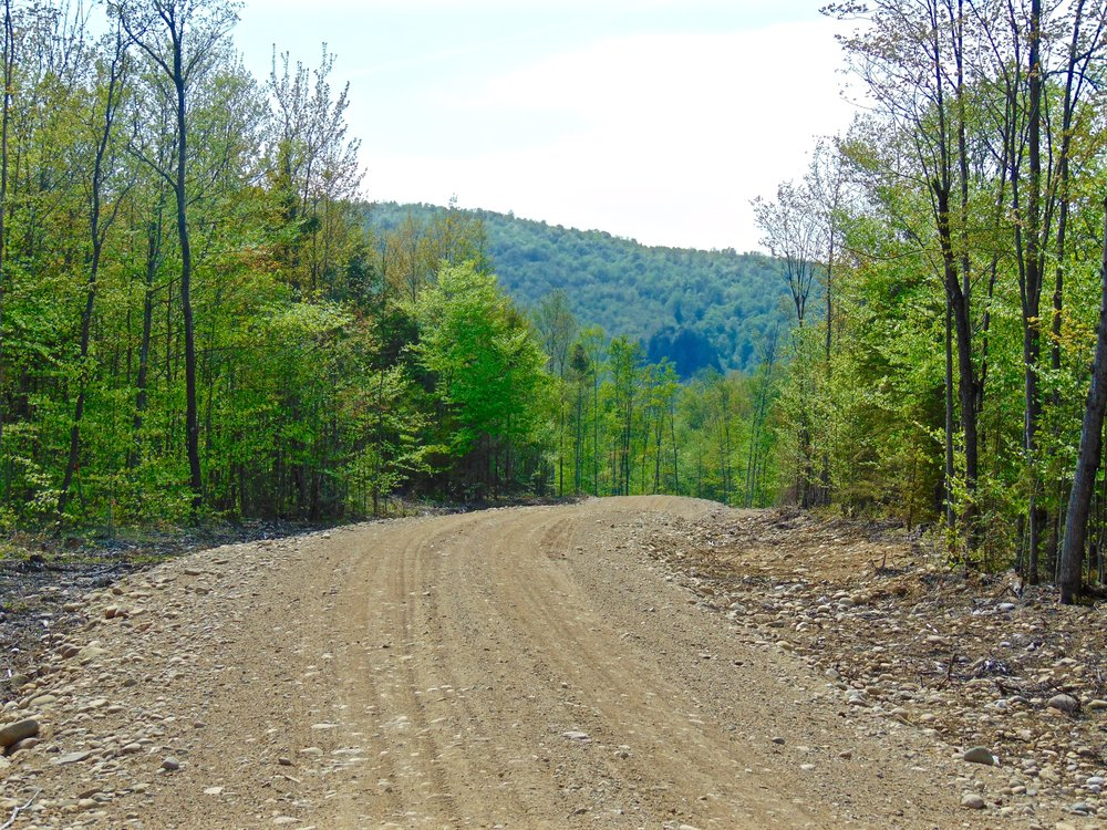 Secluded Adirondack Land for Sale