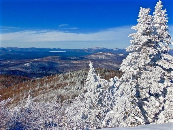 Northern Adirondacks and St  Regis Mountain - Adirondack Mt Land