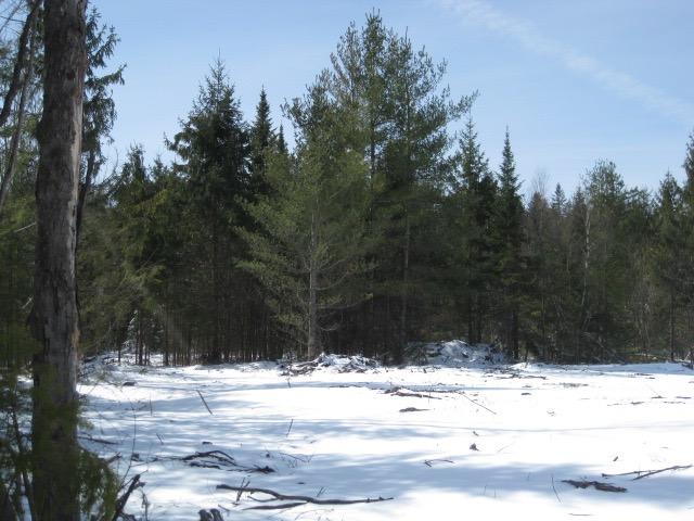 Adirondack Land for Sale