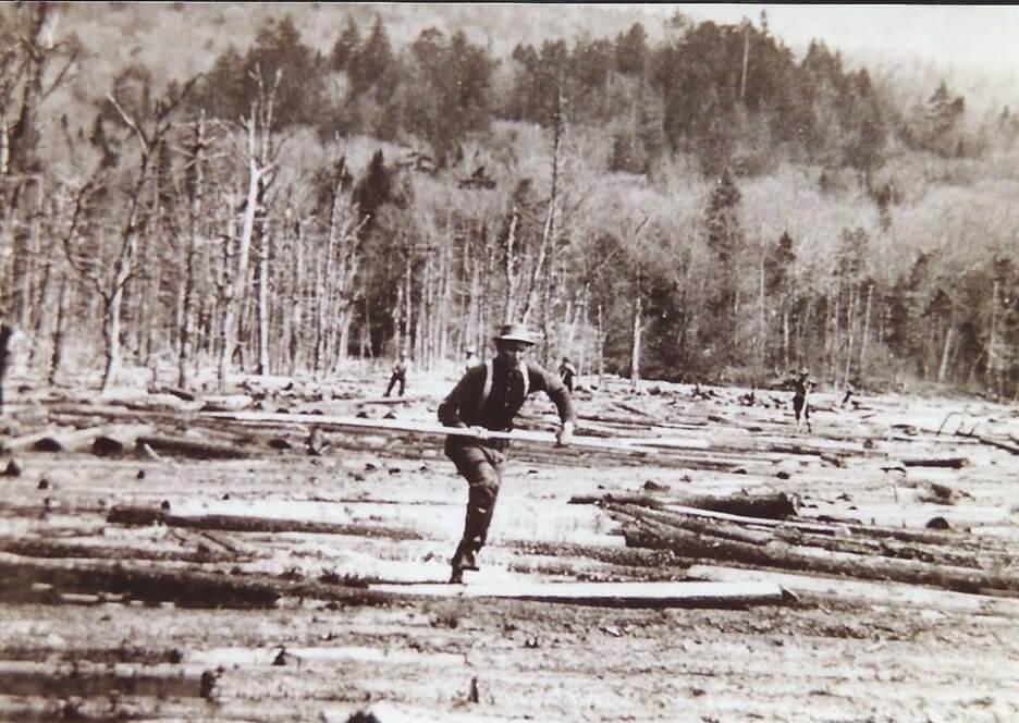 Loggers in the Adirondacks