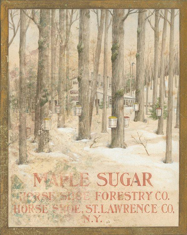 Maple Sugar Poster