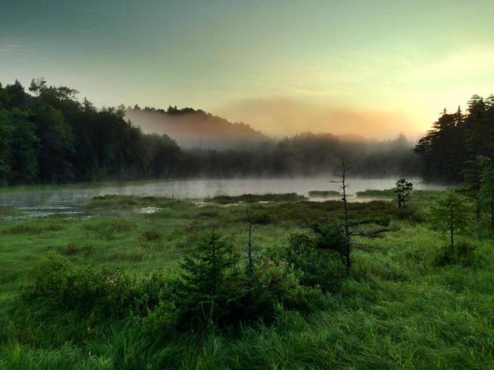 The Adirondack Mountains in the Summer