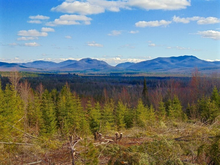 Views from Your Adirondack Property