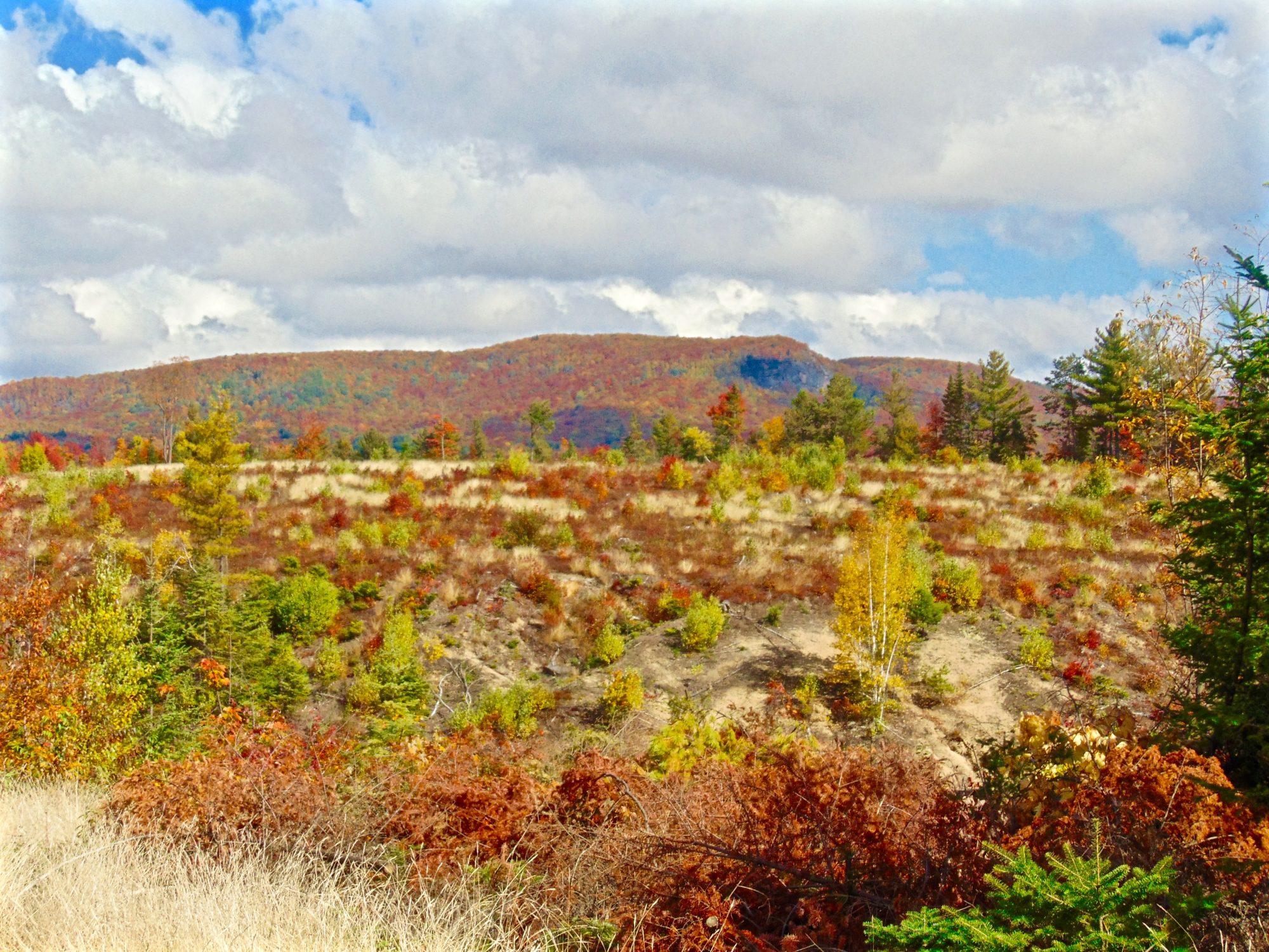 Adirondack land