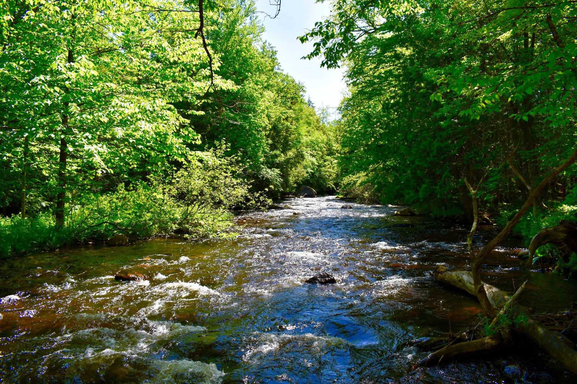 Babbling brooks close to your new Adirondack land