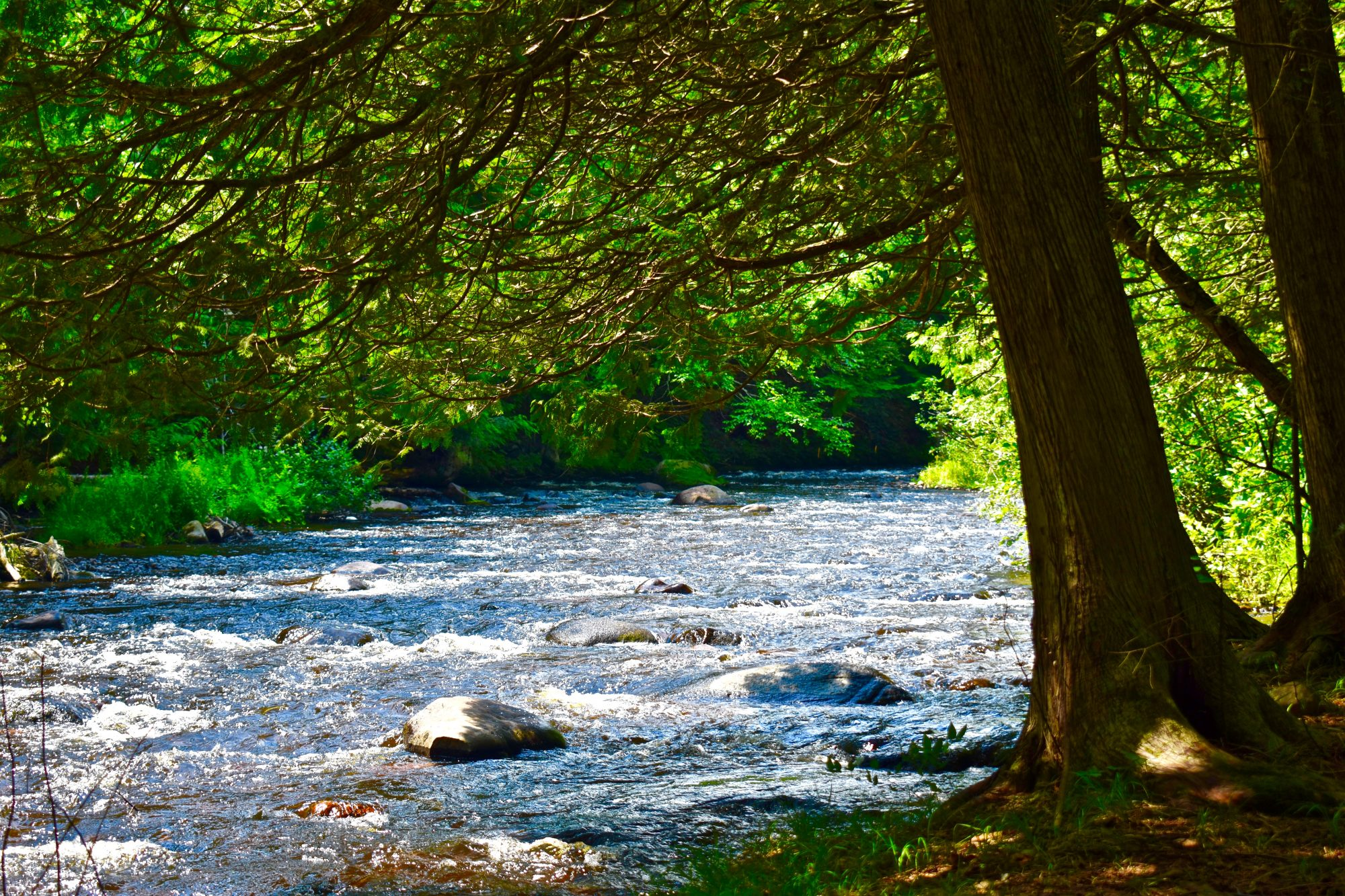Find Adirondack Land for Sale, Acreage and Waterfront Property
