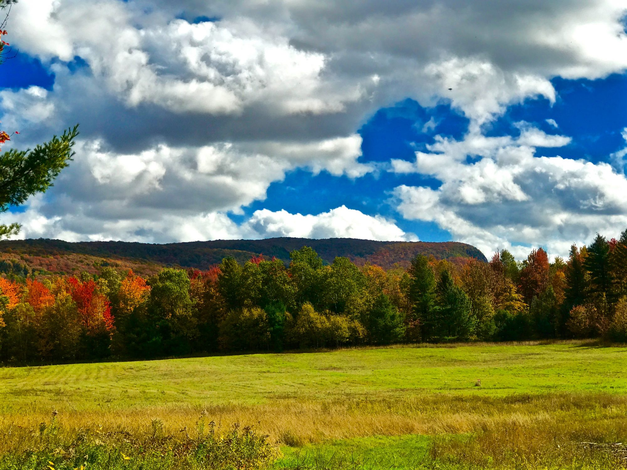 Acreage For Sale By Owner >> Large Pieces Of Adirondack Acreage For Sale By Owner Ready