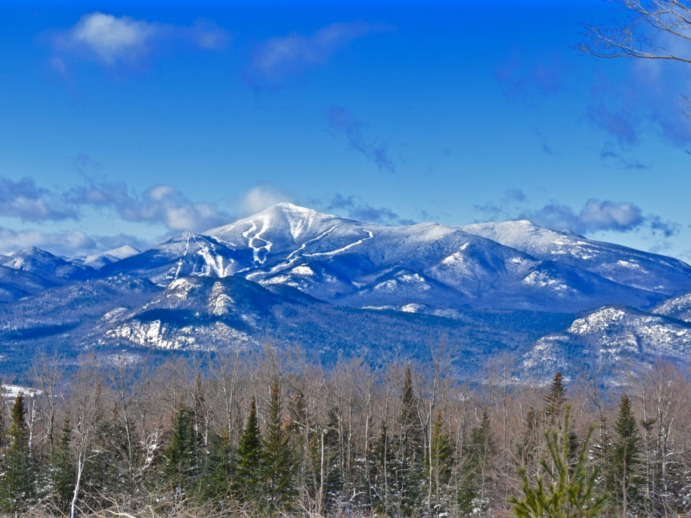 Whiteface-winter- great