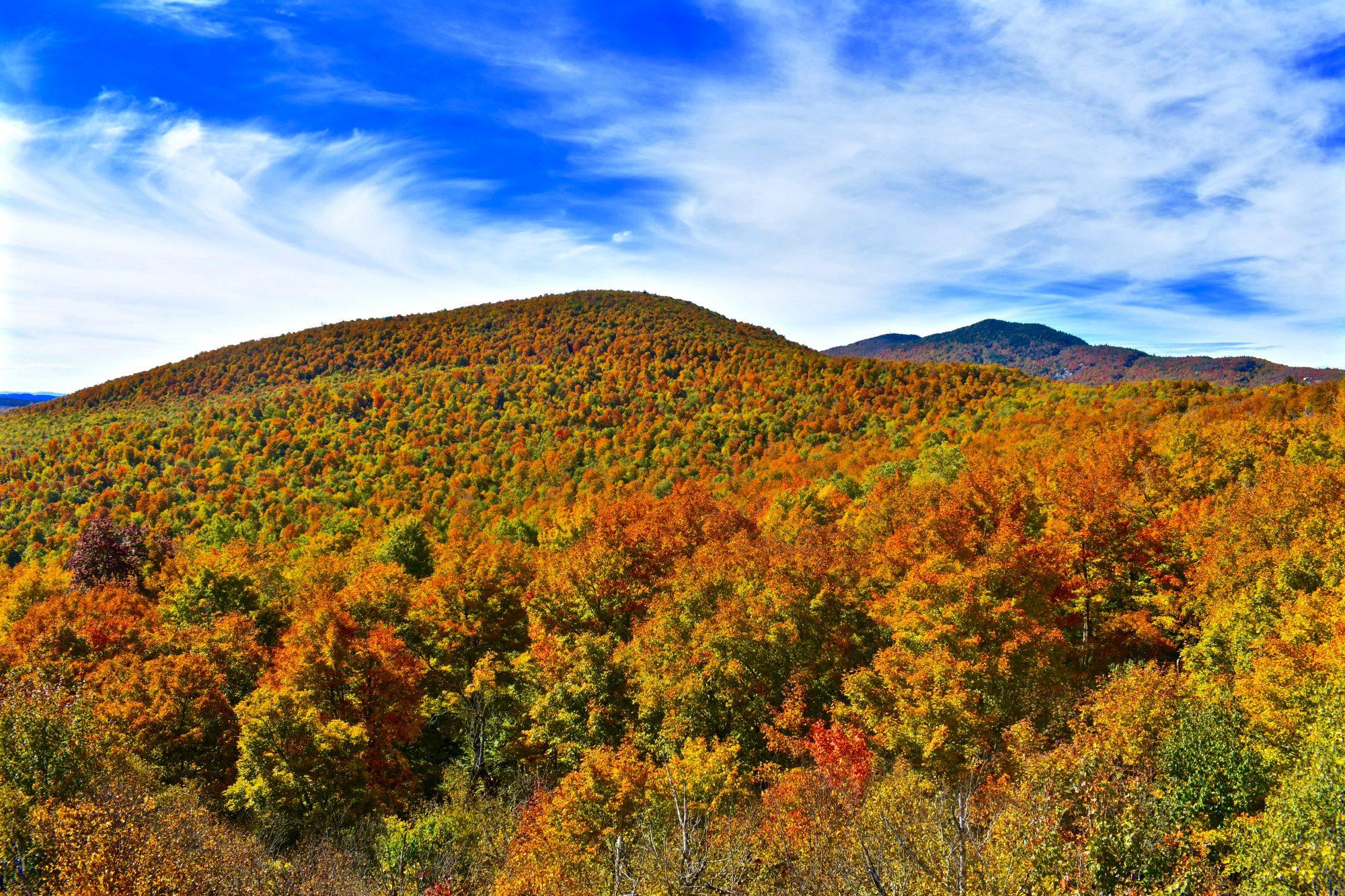 Loon Lake Mts- Fall