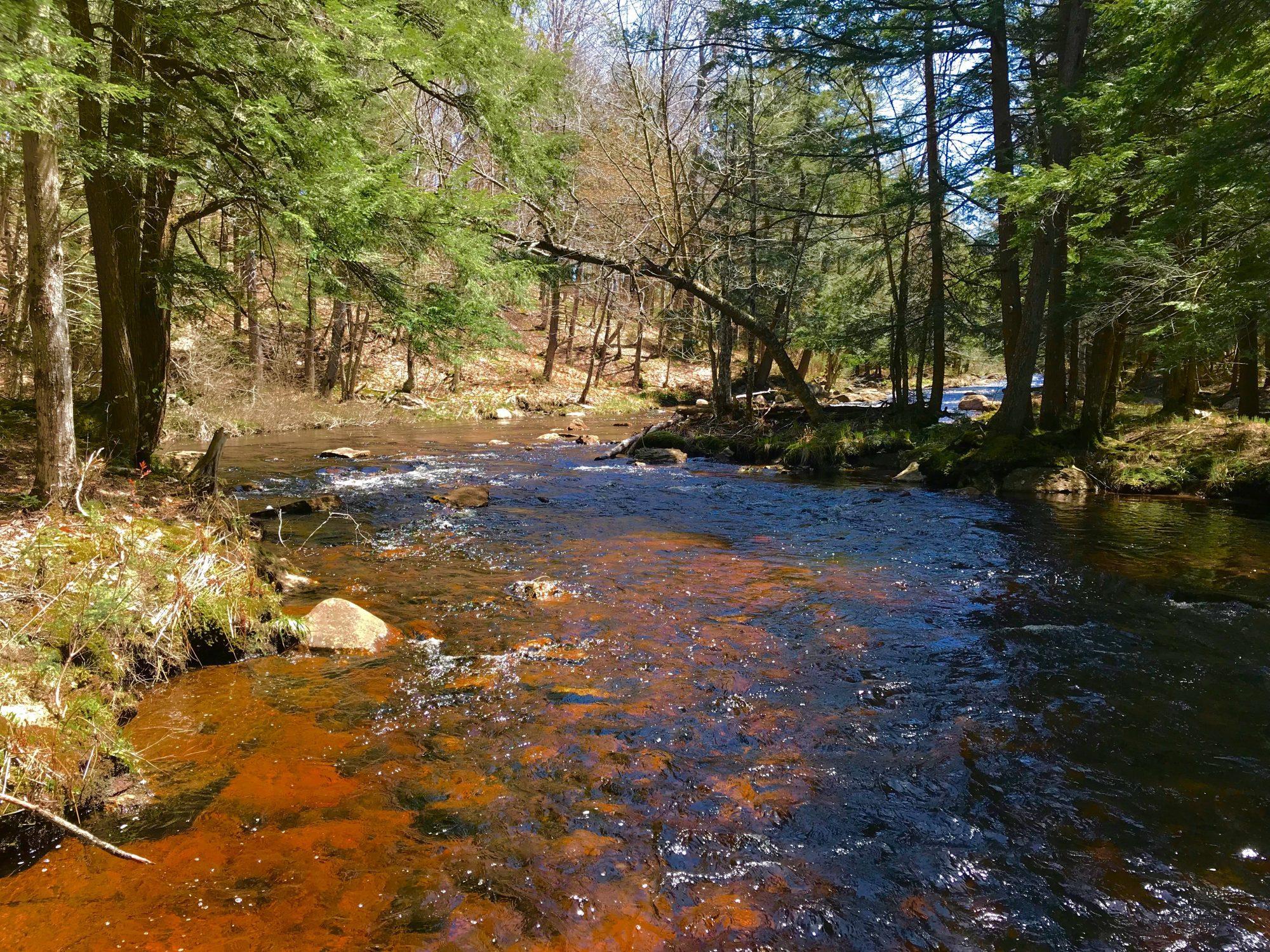 Adirondack Riverfront Properties in Upstate New York