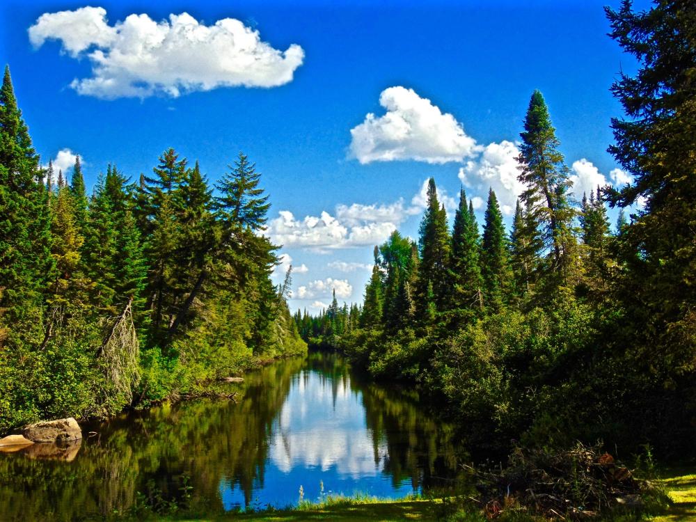 -Salmon River- great